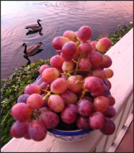 GRAPES_LAKE_PERFECT2