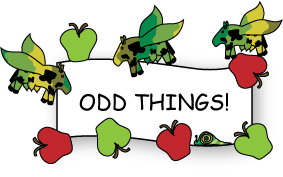ODD_THINGS_WORDS